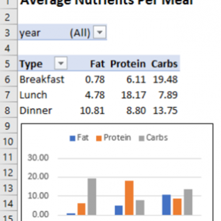 Food Tracker Data in Excel