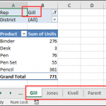 Multiple Copies of Pivot Table Sheet